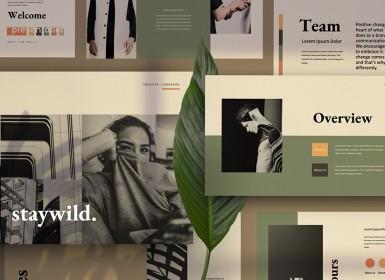 高质量简约多用途PPT演示模板-Staywild